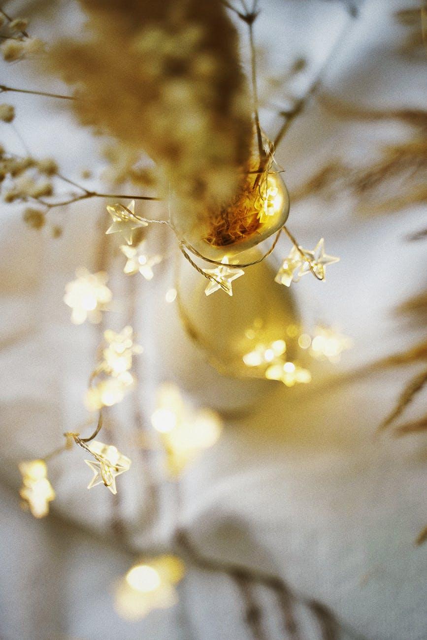 star shaped christmas lights
